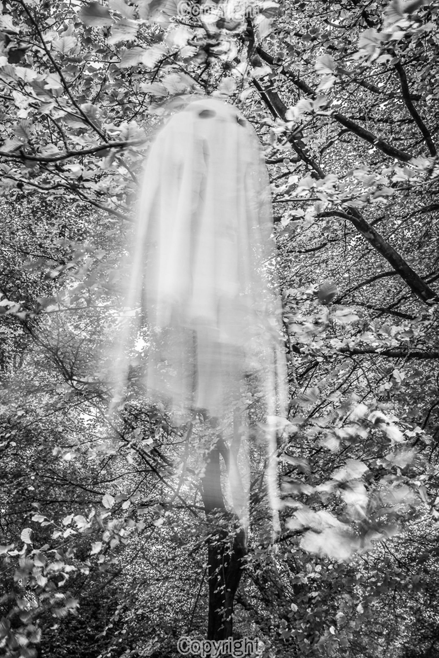 Ghostly happenings in the woods... Is it safe out there? Taken on a Nikon D800 24mm f/20 0.6s ISO 100
