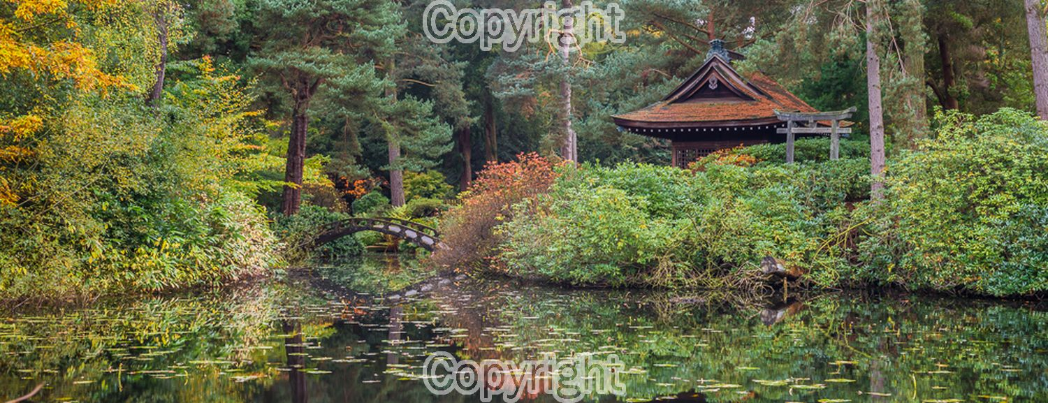 Mark Payne: Autumn at the Japanese garden at Tatton park.  Equipment: Nikon D800 & 50mm f1.4D